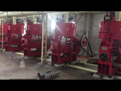 Rank-one Industries latest  Oil Mill Plant