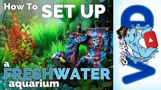 How to Set Up a Freshwater Aquarium | Big Al's