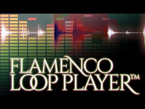 Loop Player - Flamenco Guitar Lessons Samples Database