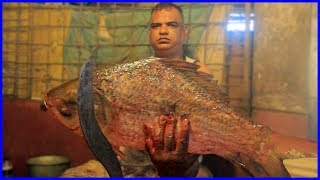 Amazing Live Fish Cutting and Cleaning Skills By Popular Fisherman | Fastest Rui Fish Slicing