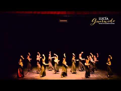 Flamenco Iniciación adultos  Rosa María