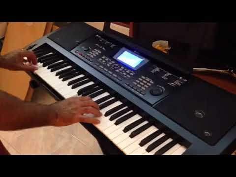 Schubert little beethoven set tastiera pianola musicale supporto e