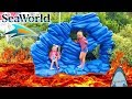 Floor is Lava at SeaWorld! Going Through a Tunnel of Sharks!!