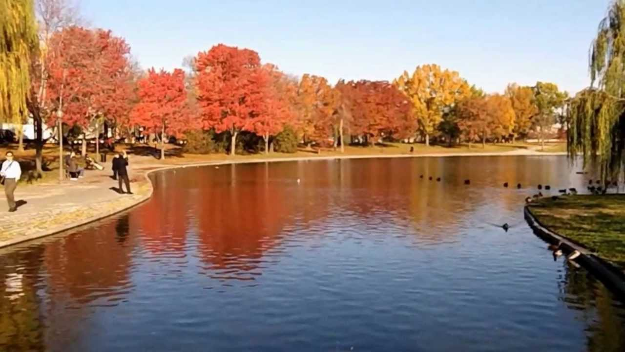 Fall Colors At The Constitution Gardens ( 2 ) - Washington DC. - YouTube