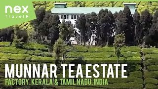Kolukkumalai Tea Estate (Factory) - Kerala Tourist Place