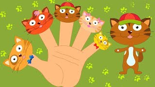 кошка палец семья | Коллекция семьи палец | Cat Finger Family | Rhymes | Kids Song | Children Rhyme