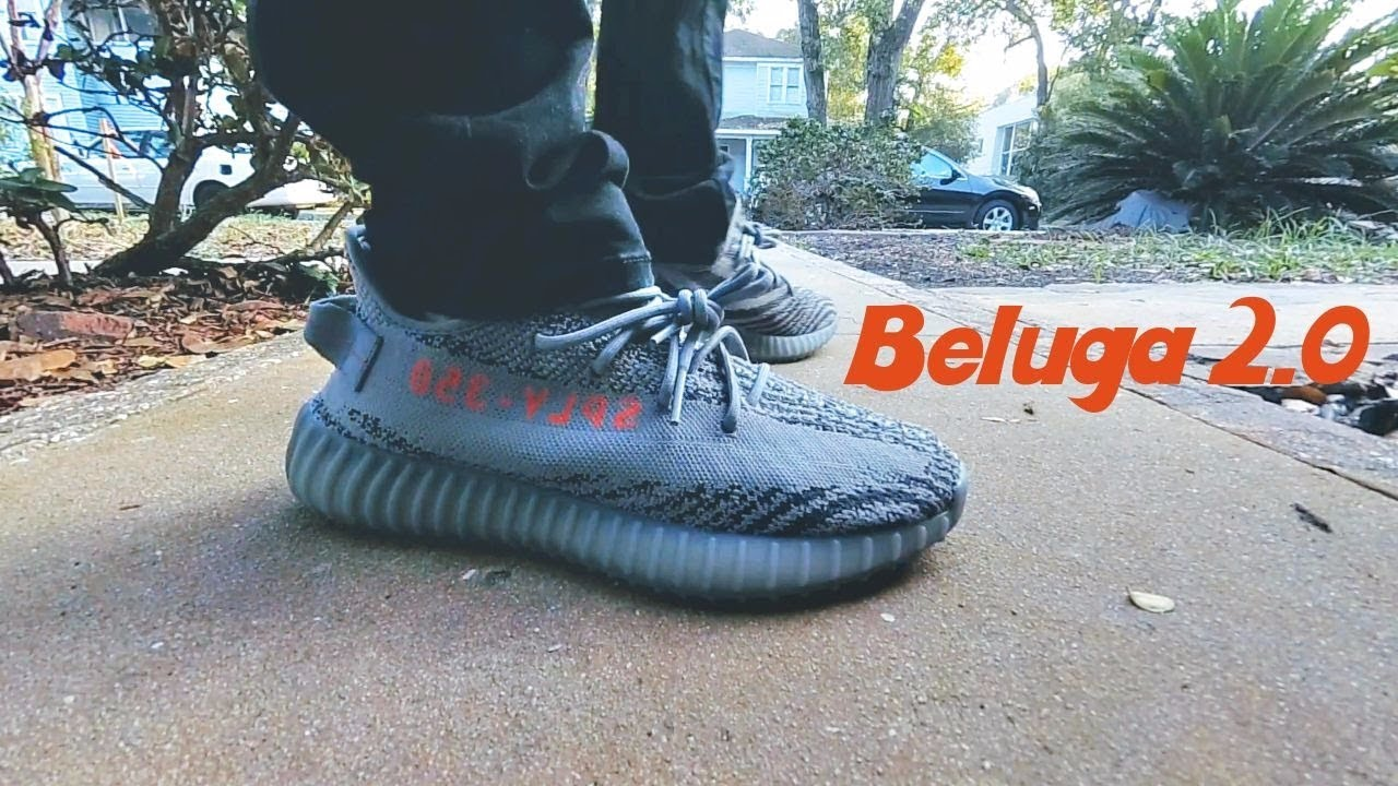 3115efb9a5ff34 YEEZY BOOST 350 V2 BELUGA 2.0 LEGIT CHECK AND ON FOOT - YouTube