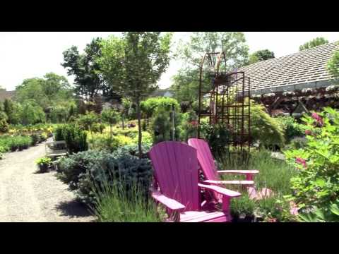 Main Street Nursery in Huntington, New York
