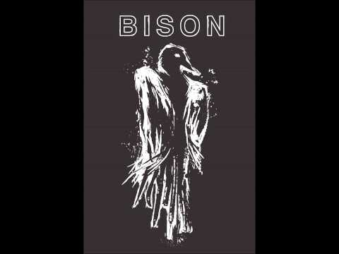 Bison (B.C.):1000 Needles