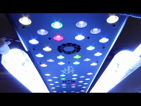What's the best led grow light