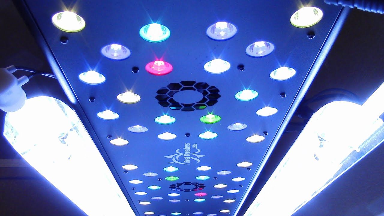 best light review watt growing galaxyhydro for spectrum lights led full grow find the indoor