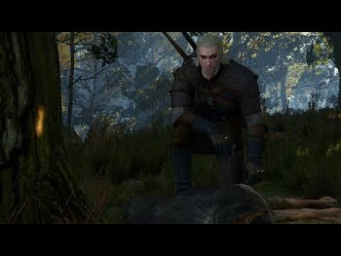 The Witcher 3 : Wild at heart (Scire Net)  