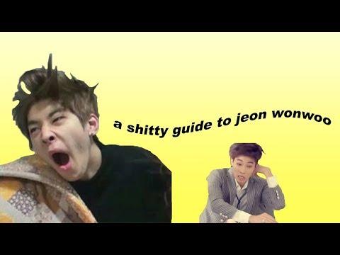 a shitty guide to jeon wonwoo