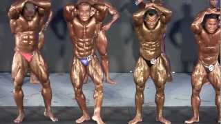 World 2012 - Mr Universe 2012 (Overall Champion)