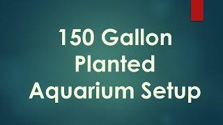 150 Gallon Aquarium Setup Day 1