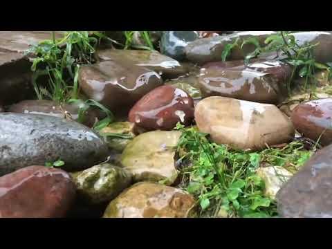 Шум дождя для сна.Релаксация. Звук дождя. Звуки природы для сна. HD video.