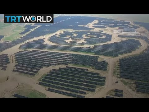 Money Talks: China's newest solar farm has a panda face