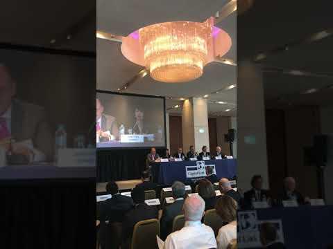 Capital Link 10th Annual Greek Shipping Forum - Dorothea Ioannou