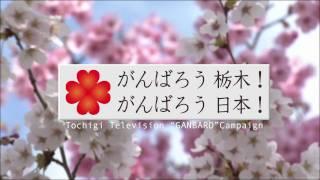 がんばろう 栃木!がんばろう 日本!