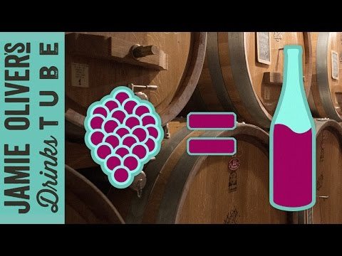How is Wine Made? | Luca Dusi