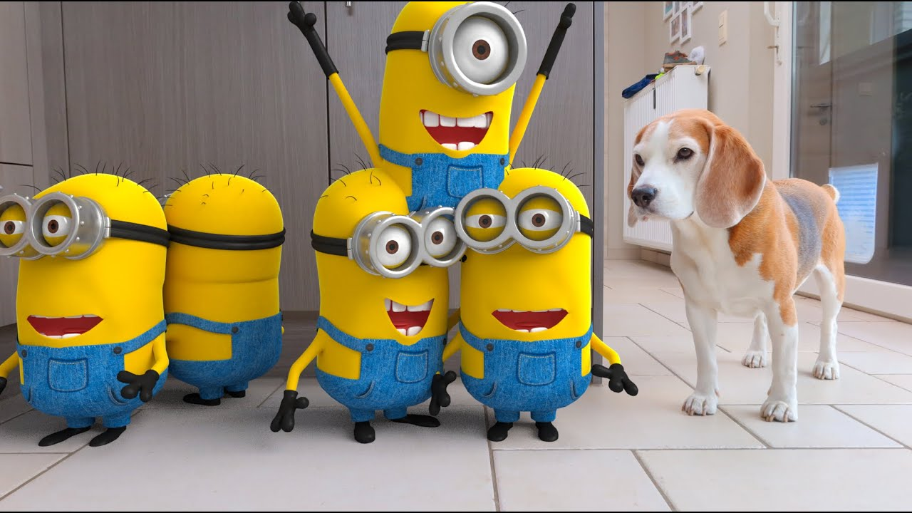 😍🍌 MINIONS IN REAL LIFE COMPILATION 2🍌😍