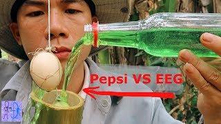 Thử Ủ Nước Sting Xanh VS Trứng Gà Trong Ống Tre Và Kết Quả Bất Ngờ .Trứng Xanh Ruột Đỏ .EGG VS PEPSI