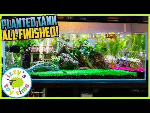 Our Son's Planted Fish Tank IS FINISHED! Fun Toys ! Pets With Izzy's Toy Time