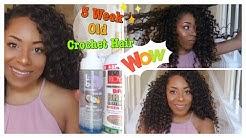 REVITALIZING 5 WEEK OLD CROCHET HAIR FT. FREETRESS PRESTO CURL  LIA LAVON