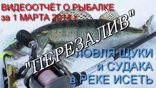ПЕРЕЗАЛИВ ЛОВЛЯ ЩУКИ и СУДАКА в РЕКЕ ИСЕТЬ видеоотчёт за 01 03 2014