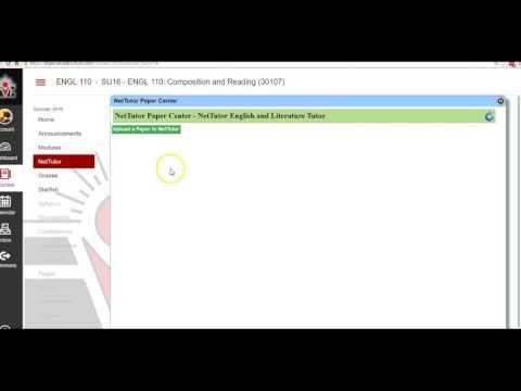New Net Tutor Overview