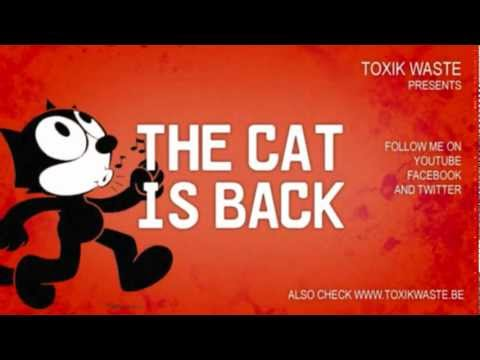 Image result for the cat is back