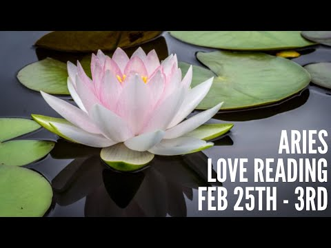 "ARIES ""BREAK UP TO MAKE UP"" FEB 25-MAR 3 WEEKLY LOVE READING 💕🍍💕"