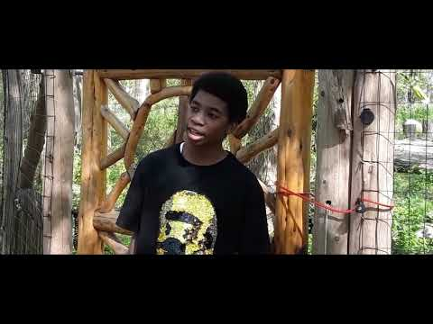 Fly Away by Sani | Official Video