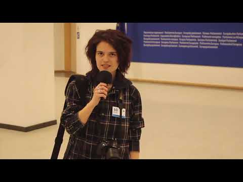 #REZIST. Bruxelles. The Story of a Putsch Against the Romanian People