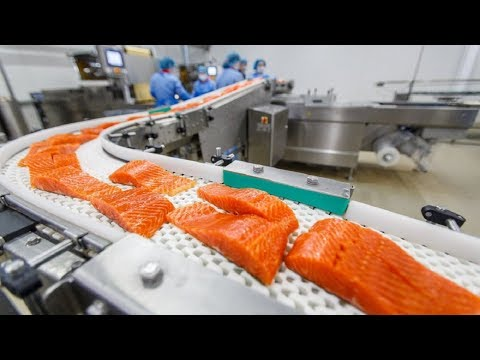 Amazing Food Cutting & Processing Machines Fish Factory ★ Satisfying Video Food Processing 2017