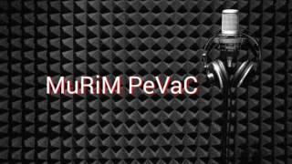 DJEMAIL DJEMAJL 2 album / 2016 MURIM  PEVAC 2016 CITA SEVCET