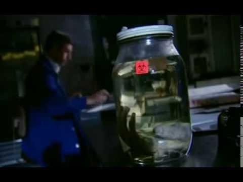 Asesinos en serie:  Aileen Wuornos