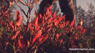 Herbst in Finnland / Autumn in Finland by Reisefernsehen.com - Reisevideo / travel video