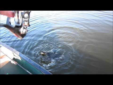 Fishing Upper Turtle Lake Wisconsin 7/4/14