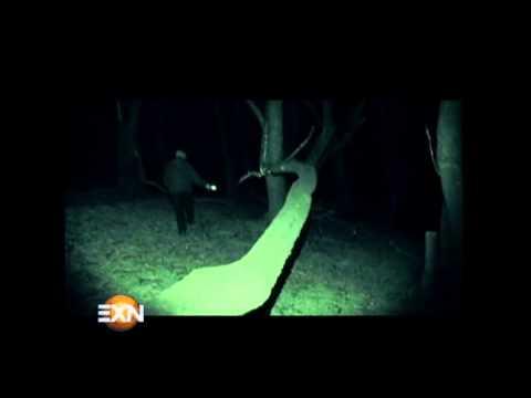 ¡Investigación Extranormal en el Km 31! Parte 2