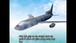 Máy bay hoạt động như thế nào?