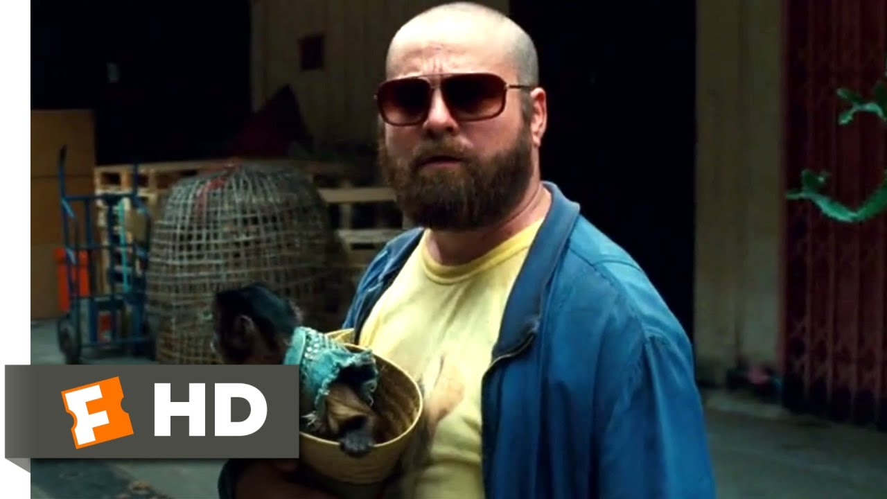 Download The Hangover Part II (2011) - Phil Gets Shot Scene (4/6)   Movieclips