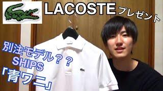 【ラコステ】夏に着たい!ベーシックなポロシャツの紹介! ラコステ 検索動画 4