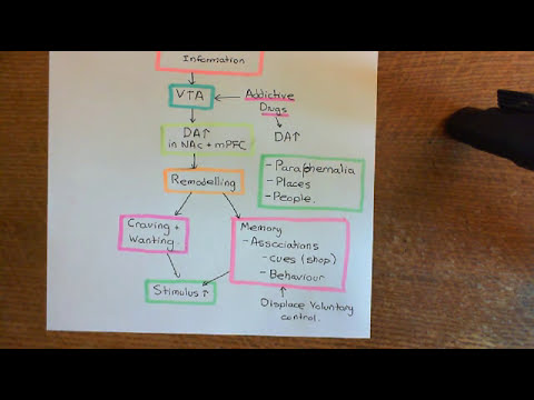 Drug Addiction Part 3