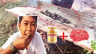 Primitive Technology- nail for food - Cooking snail with skills eating delicious