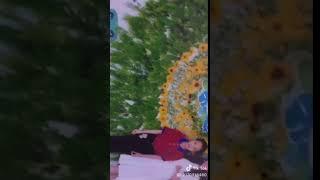 Tik Tok Video!!!!kênh nhi Kitty