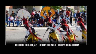 Explore The Wild - Discover Gila County In Globe, AZ