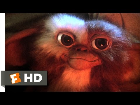 Gremlins (1/6) Movie CLIP - Billy Meets...