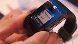 zTE BlueWatch Smartwatch, BT4, 1.26