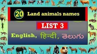 जानवरों के नाम (स्थलीय) List 3 Land Animals English, Hindi and Telugu  Names